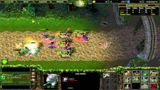 (014) WarCraft 3: TFT - Castle Fight - Naga