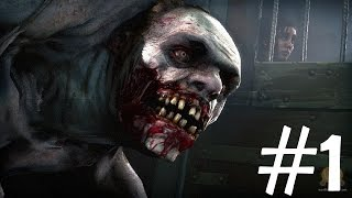 Прохождение LEFT 4 DEAD 2 (Co-op) #1 Болотная лихорадка (pavel6391&IlyXaGames&Hitmanstrace)