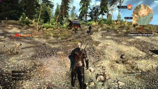 The Witcher 3: Wild Hunt На скеллиге