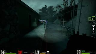 Left 4 Dead 2 Witch bug