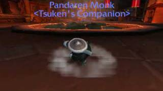 Pandaren Monk Pet - World of Warcraft