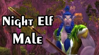 NIGHT ELF MALE Character Models for World of Warcraft - Warlords of Draenor WOD
