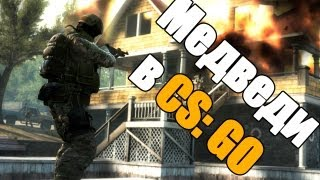 Counter-Strike: Global Offensive (CS:GO) - Медведи с пушками! via MMORPG.su