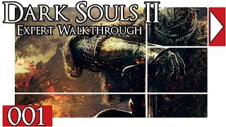Dark Souls 2 Expert Walkthrough!