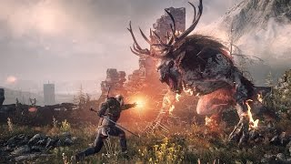The Witcher 3: Wild Hunt #32 Театральный Геральт.