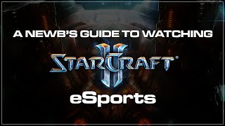 BlizzCon! A newb's guide to Starcraft 2 eSports.