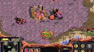 Starcraft Brood War: Zerg Campaign -
