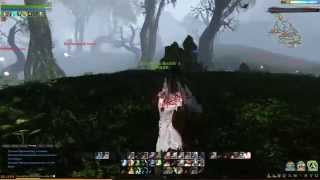 ArcheAge MMORPG Game