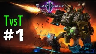 1vs1 Starcraft 2 HotS