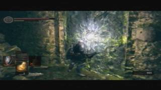 Dark Souls - Glowing Door in Darkroot Garden