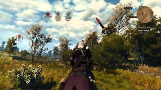 The Witcher 3 Меч Гинваэль Аэдд и Вилохвост (На смерть)