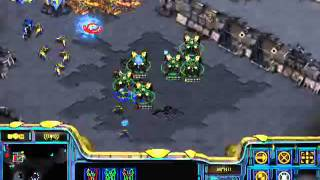 StarCraft Brood War [FPVOD] 27 08 2008 White Ra PvP Протоссы атакуют