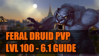 WoD 6.2 Feral Druid PvP Guide: Talents/Glyphs/Macros/Rotation/Addons/Stat Priority [WoW]
