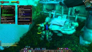 World of Warcraft: The Burning Crusade 2.4.3 Х100 Друид №8