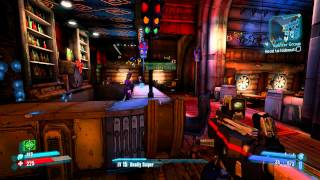 BORDERLANDS 2 - SECRET GUNS!
