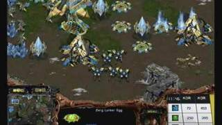 2009 WCG Grand Final Fifth day: Final - StarCraft 1set : Jaedong vs Stork