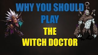 Diablo 3 ROS:Why You Should Play The Witch Doctor