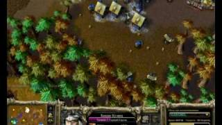 Warcraft 3 tft Human tactics