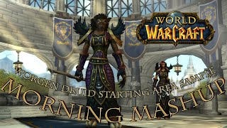 Morning Mashup: World of Warcraft Worgen Druid [Starting Area Sample]