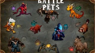 Battle pets hunting - Stowaway Rat