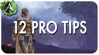 ArcheAge: 12 Tips to Improve Your ArcheAge Experience