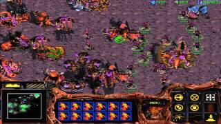Let's Play Starcraft Brood War 27: Zerg Mission 10 - Omega