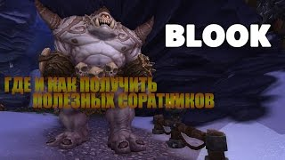 World of  Warcraft-Где и как получить полезных соратников(Блук)