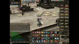 Tyrr Warrior - Ceremony of Chaos(Last Man Standing) Lineage II Magmeld