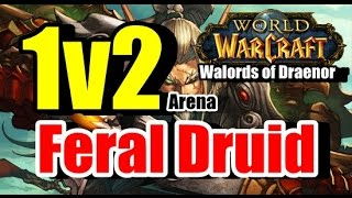 Feral Druid 1v2 Arena [World of Warcraft: Warlords of Draenor]