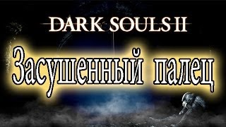 Dark Souls 2 - Hints/Guides