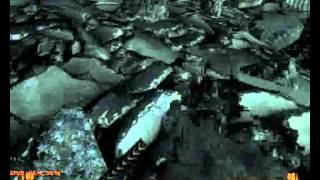 The Game Legendary выпуск №1:Fallout 3