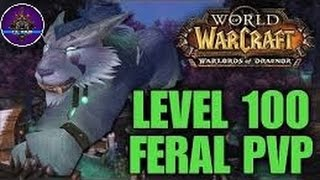 World of Warcraft - Feral Druid PvP (Level 100!) #1