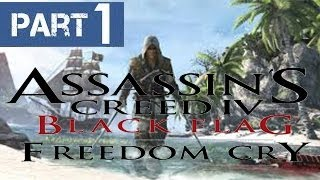 Видео Обзор - Assassin's Creed 4 Freedom Cry # 1