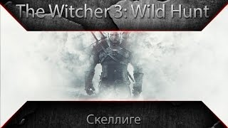 The Witcher 3 Wild Hunt - Скеллиге №17