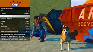 GTA 5 ANIMAL PET SHOP MOD - GTA 5 New Pets Mod (GTA 5)