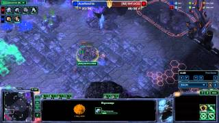 Acer - StarCraft 2 - Heart of the Swarm - M