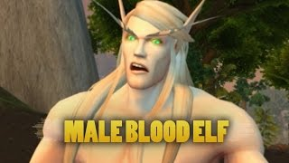 World of Warcraft: Warlords of Draenor - Updated male blood elf animations